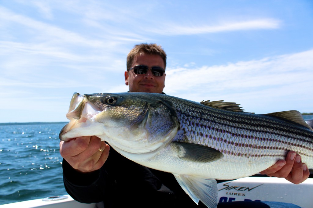 Thomas Boss showing off a fine striped bass caught recently aboard Coastal Charters Sportfishing.