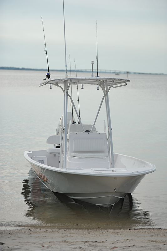 Dusky Marine